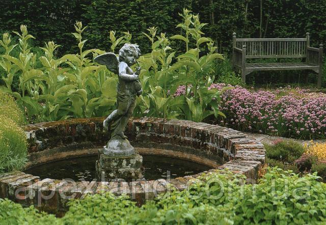 классический круглый водоем в саду