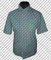 Пошив рубашек под заказ. Корпоративная одежда