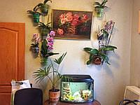 """Подставка для цветов 5 орхидей """"Змея-2"""""""
