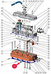 Заглушка головки блока цилиндров Д-240,245