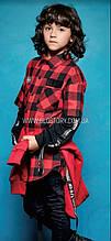 Классическая рубашка для мальчика d rktnre, Glo-story