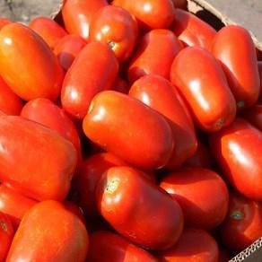 КЛАССИК F1 / CLASSIC F1, 10 семян — томат детерминантный сливовидный, Nunhems, фото 2