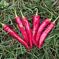 Семена перца острого ES 8716 F1 (100 сем.), фото 1
