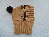 Шапка для собаки,шапка для таксы,одежда для домашних животных, фото 9