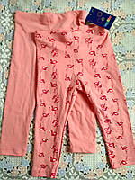 Комплект штанов для девочки LUPILU рост 74/80 возраст 6-12 месяца. Новый.