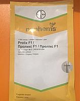 Огурец Проликс F1(Nunhems) Нунемс 1000 семян