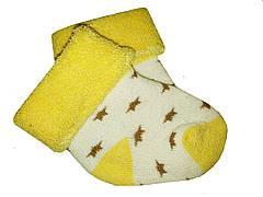 Носочки теплые махровые Biedronka  0-3 мес (желтый)