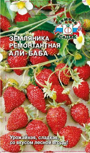 Земляника ремонтантной Али-Баба 0,04 г.