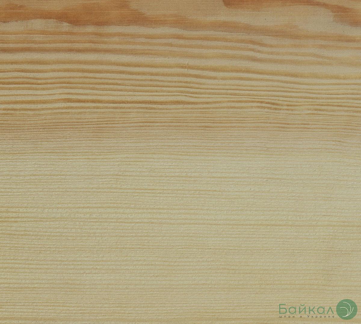 Шпон строганный Сосна (на подложку) 0,6 мм ВС 2,10 м+/9 см+