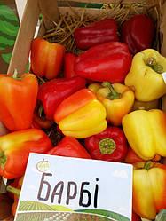 БАРБИ F1 / BARBIE F1, 8 семян — перец сладкий, Syngenta