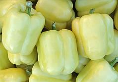 БЛОНДИ F1 / BLONDY F1, 8 семян — перец сладкий, Syngenta