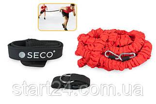 Тренировочный ремень SECO (ремень для выбегания)