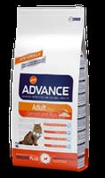Advance Salmon for Adult Cat (корм для взрослых котов и кошек)