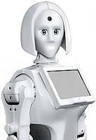 РОБОТ КІКІ девушка с искусственным интеллектом