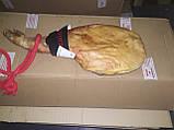 Хамон Палета Серрано 5 кг 10 мес, фото 2