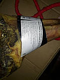 Хамон Палета Серрано 5 кг 10 мес, фото 4