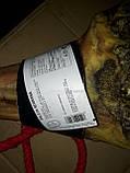 Хамон Палета Серрано 5 кг 10 мес, фото 6