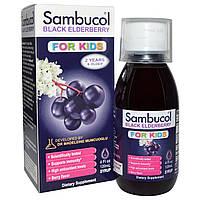 Чёрная бузина, Поддержка иммунной системы, для детей, сироп, (120 мл) Sambucol