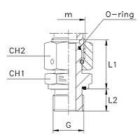 "Адаптер прямий DIN24* METR 28L(Г) M36*2 - BSP-OR 1""(Ш)"
