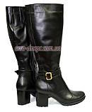 Женские сапоги на устойчивом каблуке, из кожи черного цвета. Батал!, фото 5
