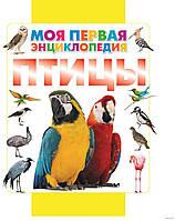 Птицы. Моя первая энциклопедия. Д.Кошевар