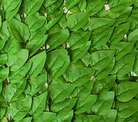 """Декоративное зеленое покрытие """"Листья"""" GC-07"""