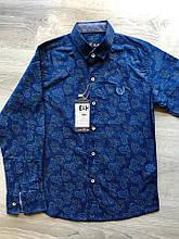 Рубашка на мальчика Breeze. Размер 128, 134, 140,146,152 (большем)