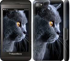 "Чехол на Blackberry Z10 Красивый кот ""3038c-392-328"""