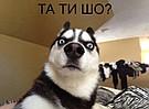 """Интернет-магазин """"Все лучшее"""""""