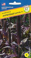Пенисетум Пурпурный барон