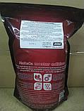 Перець червоний солодкий мелений (ПАПРИКА) 1кг, фото 3