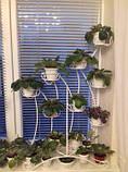 """Підставка для квітів на 12 чаш """"Азалія-1"""", фото 10"""