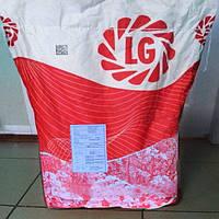 Семена подсолнечника Тунка от компании Лимагрейн