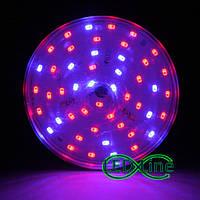 Светодиодная фитолампа led лампа для растений E27 16 Вт биколор красно-синий свет