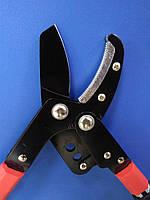 Ножницы для обрезки веток с телескопической ручкой Intertool 680-1020 мм, фото 1