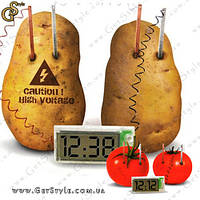 """Овощные часы -  """"Vegetable Clock"""" - Оригинал!, фото 1"""