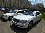 Аренда авто Мерседес 220 белый, фото 6