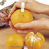 """Нож-кольцо для чистки цитрусовых - """"Orange Ring"""" - 5 шт., фото 1"""