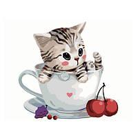 Картина по номерам. Котик в чашке, Картины по номерам, Картина за номерами. Котик в чашці