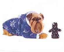 Одяг і взуття для собак