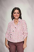 """Легакая женская блуза в горошек """"Adeli"""" с рукавом 3/4 (большие размеры), фото 3"""