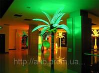 Светящиеся Пальмы: что это такое и как их использовать?