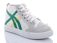 Кроссовки женские Girnaive 818 green (36-40) - купить оптом на 7км в одессе