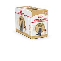 Royal Canin British Shorthair (кусочки в соусе) 85г*12шт - паучи для британских короткошерстных кошек