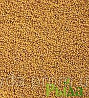 Семена горчицы(сидерат)