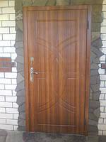 Двери №10