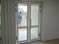 Двері вхідні маятникові (2ств)