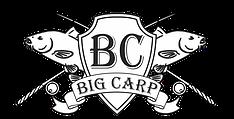 Рыболовный интернет-магазин BigCarp