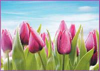 Тюльпаны  фотообои  №11  272*196    8 листов  -  для гостиных, спален др. комнат