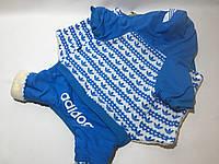 Комбинезон Адидог 5-XL синий